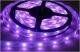 LED pásek 12W/1m, 12V, 5m, IP33, RGB